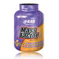 Mass Factor Chocolate 