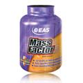 Mass Factor Chocolate