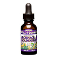 Echinacea Goldenseal Orange Flavor -