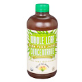 Aloe Vera Juice Whole Leaf Concentrate Orange/Peppermint -