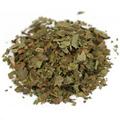 Black Walnut Leaf C/S Wildcrafted -
