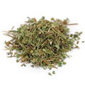 Gotu Kola Herb C/S Wildcrafted -