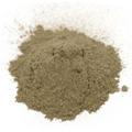 Plantain Leaf Powder Wildcrafted -