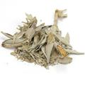 Sage Leaf White Whole -