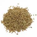 Cumin Seed -