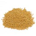 Mustard Seed Yellow -