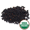 Bilberries Organic -