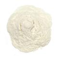 Bromelain Powder 150gdu -