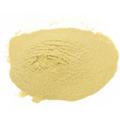 Nutritional Yeast Powder -