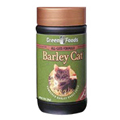 Barley Cat -