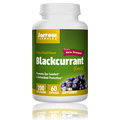 Black Currant Extract 200 mg -