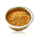 Coriander Seed Whole -