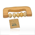 NensNum 628 Massage Roller Beaded