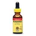 Bladderwrack Extract -
