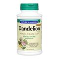 Dandelion Root -