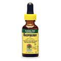 Red Raspberry Leaf Alcohol Free Extract -