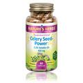 Celery Seed Power