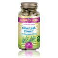 Olive Leaf Power