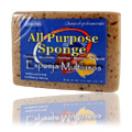 All Purpose Sponge -