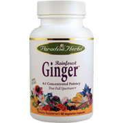 Rainforest Ginger -