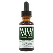 Wild Yam Root Extract -