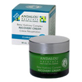 Clear Overnight Recovery Cream -
