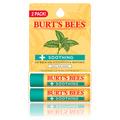 2-Pack Eucalyptus Lip Balms -