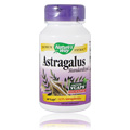 Astragalus -