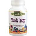 Muscle Energy -