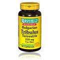 Tribulus Terrestris 250mg