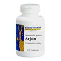 Arjun -