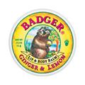 Ginger & Lemon Lip Balm Tin -