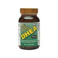 99% Pure DHEA 50 mg -