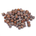 Cedar Berries Wildcrafted -