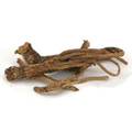 Yerba Mansa Root Whole Wildcrafted -