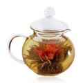 Glass Teapot Teahouse -