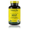 Kelp -