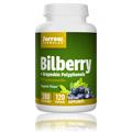 Bilberry + Grapeskin Polyphenols 280 mg -
