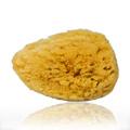 Nens Num 102 Natur Sea Sponge Large -