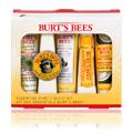 Essential Burt's Bee Kit -