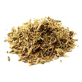 Organic Angelica Root -