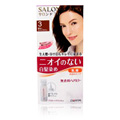 Salon De Hair Colo Non Smell #3 Brighter Light Brown -
