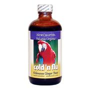 Cold n' Flu Echinacea Ginger Tonic -