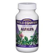 Alfalfa -