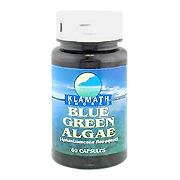 Klamath Shores Blue Green Algae -