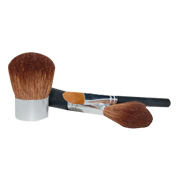Professional Brush Kit -