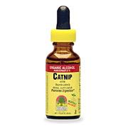Catnip Extract -